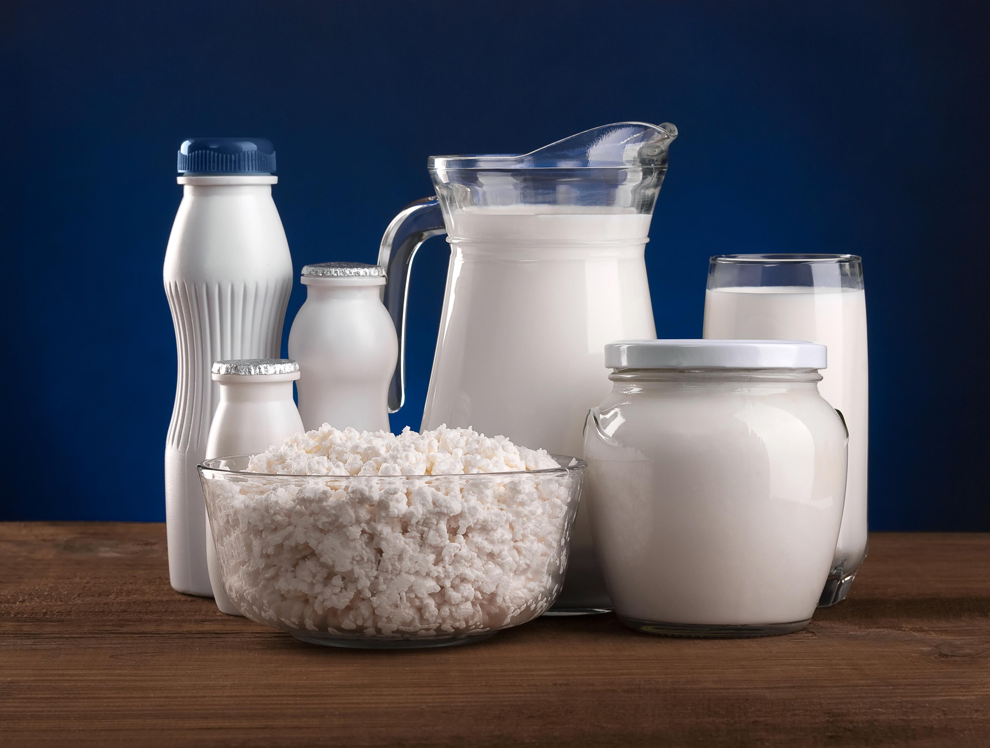 Бактериальная закваска йогурт VIVO  купить закваски для