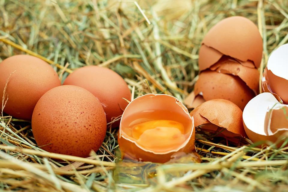 Роспотребнадзор не отыскал фипронила вбелорусском яичном порошке