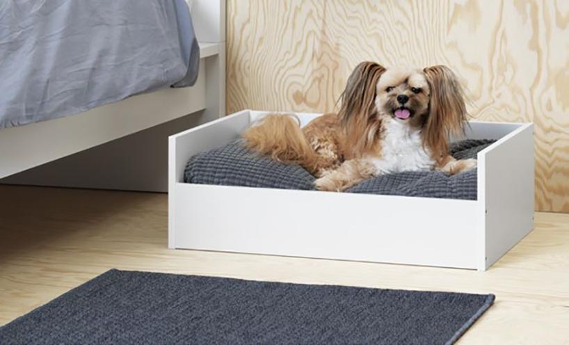 Шведский гигант IKEA создал линию мебели для домашних питомцев